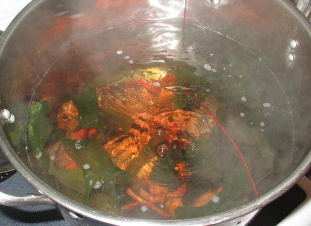 Boiling Lobsters 3