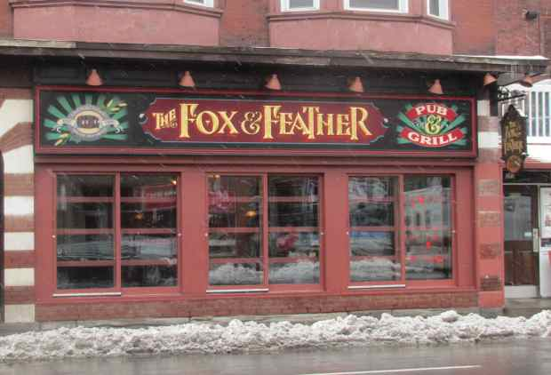 Fox and Feather 1