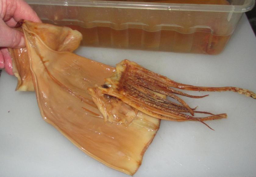 Dried Squid 5