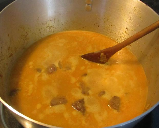 Madras Beef Curry 04