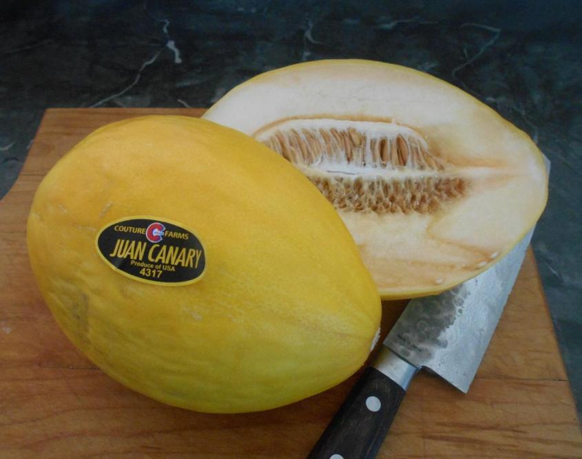 canary-melon-1