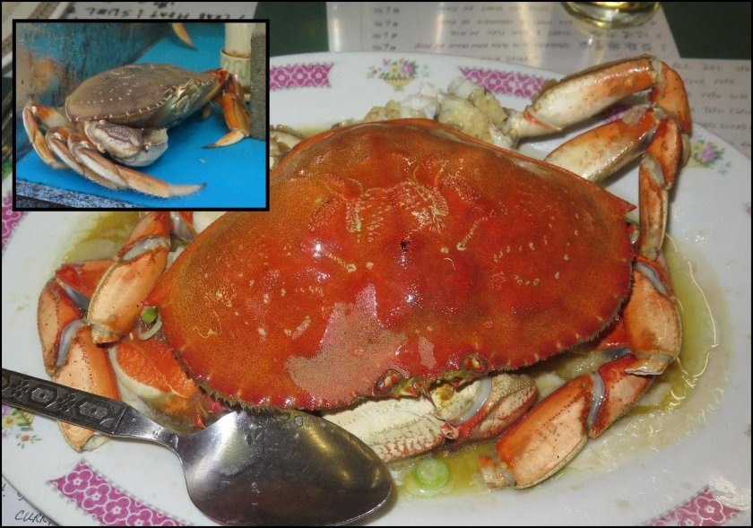 Steamed Crab 1